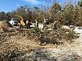 Irma Recovery Teams (37121002712).jpg