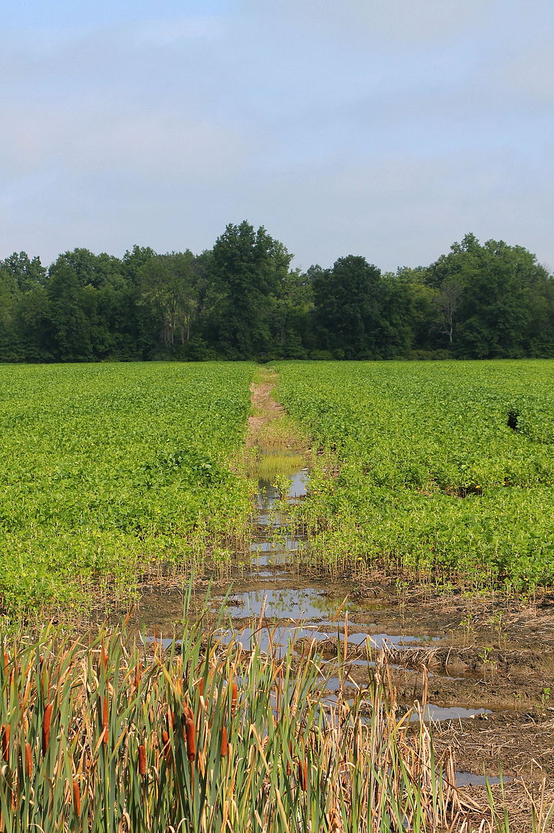 Irrigation ditch in Montour County, Pennsylvania.JPG