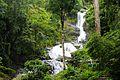 Iruppu Falls, Karnataka.jpg