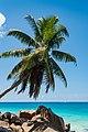 Isaland paradise Seychelles islands (27839592709).jpg