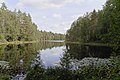 Iso Naistenjärvi länsiranta.jpg
