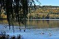 Ithaca, NY 39.jpg