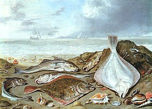 Demersal fish -  Benthic flatfish and benthopelagic cod on a shore – Jan van Kessel senior, 1626–1679