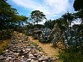 Jardín xerofítico. Parque Generalísimo Francisco De Miranda (Parque del Este).jpg