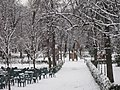Jardines del Buen Retiro (Madrid) 09.jpg