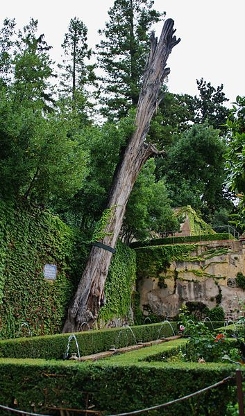 File jardines del generalife granada 31 jpg wikimedia for Jardines nazaries