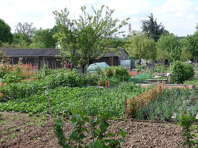 File jardins familiaux4 jpg wikimedia commons for Jardin ouvrier 78