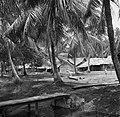 Javaanse kampong, waarschijnlijk in Nickerie, Bestanddeelnr 252-5517.jpg