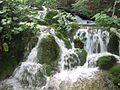 Jedan od brojnih slapova Plitvičkih jezera.jpg