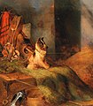 Johann Matthias Ranftl - Dog in the Tack Room.jpg