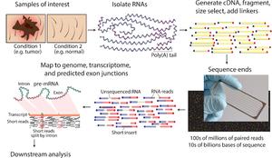 RNA-Seq - Overview of RNA-Seq.