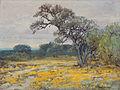 Julian Onderdonk - Coreopsis, Near San Antonio, Texas, 1919.jpg