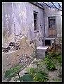 June Flower ^ Cherry Farming Endingen Kaiserstuhl - Master Seasons Rhine Valley Photography 2013 - panoramio (8).jpg