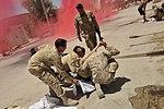Kandahar Airfield holds mass casualty exercise DVIDS419339.jpg