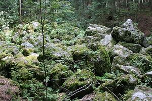 Blockfield - Boulder stream of the Kaser Steinstube near Triftern