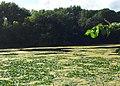 Keller Lake - Maplewood, MN - panoramio (7).jpg