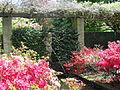 Keukenhof Garden (33).JPG