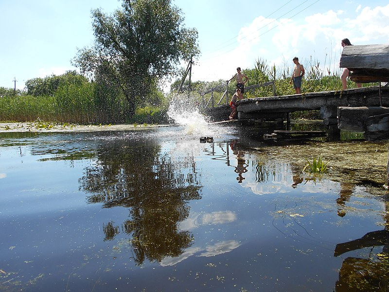 File:Khorol's'kyi district, Poltavs'ka oblast, Ukraine - panoramio (241).jpg