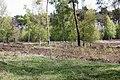Kleine Heidelandschaft.jpg