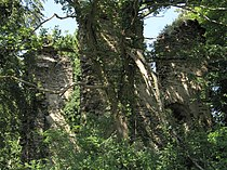 Klosterruine-Brunnenburg-JR-G6-3770-2009-08-06.jpg