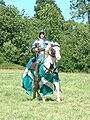 Knight at Battle Abbey.jpg