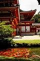 Koi Pond @ Byodo-In Temple (15402918187).jpg