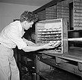 Koks in een productie keuken bereiden grote hoeveelheden smørrebrød, Bestanddeelnr 252-9046.jpg