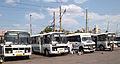 Kryvyi Rih - buses.jpg