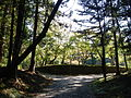 Kumano Kodo Dainichigoe World heritage15.JPG