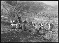 Kvinnelige Misjonsarbeideres arbeid i Tysfjord - fo30141712220029 1.jpg