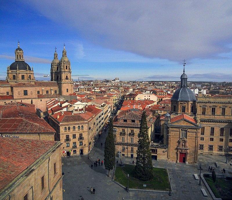 Palacio de Anaya, la Clerecía y la Rúa Mayor