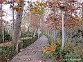 Laleh Park, Tehran, Tehran Province, Iran - panoramio (2).jpg