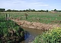 Lambwath Stream, High Fosham - geograph.org.uk - 561086.jpg
