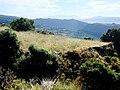 Landschaft in der Sierra Nevada05.jpg