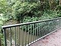 Landschaftsschutzgebiet Warmenau-Ufer LSG OS 00019 Datei 5.jpg