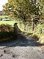 Lane down from A470 - geograph.org.uk - 601203.jpg
