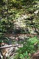 Leonard Harrison State Park Turkey Path Waterfall 2.jpg