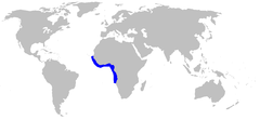 Range of the barbeled houndshark