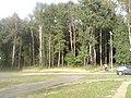 Lieninski District, Mogilev, Belarus - panoramio (372).jpg