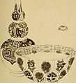 Life of James McNeill Whistler, (1911) (14596873970).jpg