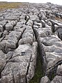 Limestone pavement - geograph.org.uk - 1180497.jpg