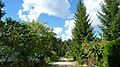 Lipkusz - Widok z pod domku nr 120 - panoramio.jpg