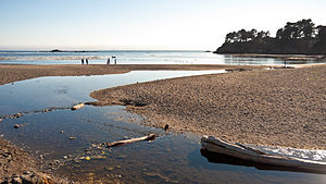 Little River (Mendocino County) - The mouth of the Little River, in Van Damme State Park