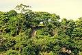 Liwulompona, siompu - panoramio.jpg