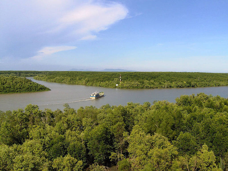 Can Gio Mangrove Forest Recognized as World's Biosphere Reserve