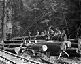Loading crew seated on logs at landing, Bramhall Logging Company, Kerry, ca 1912 (KINSEY 2119).jpeg