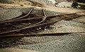 Lost Tracks (1495127360).jpg