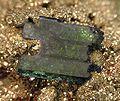 Ludlamite-Vivianite-119405.jpg