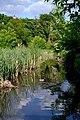 Lutsk Volynska-Volyn botanic garden-near Sapalaivka river-3.jpg