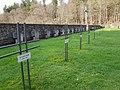 Mönchsfriedhof.jpg